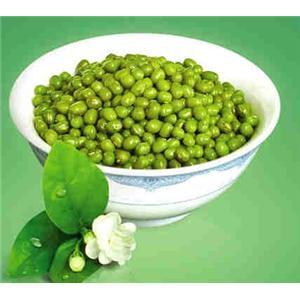 绿豆马齿苋汤