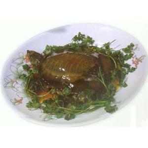 甲鱼猪髓汤
