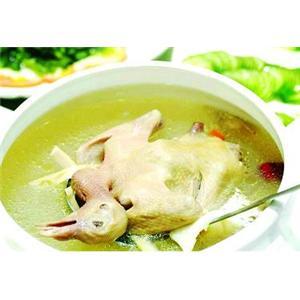 产妇鸽子汤