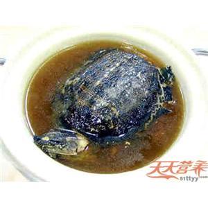 团鱼炖桂圆