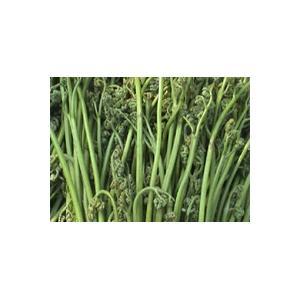 麻辣脆皮蕨菜卷