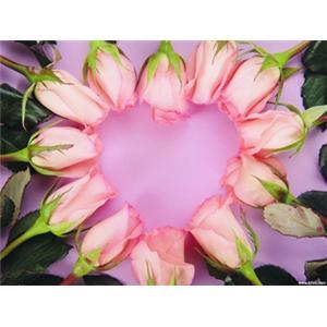 汽球玫瑰花的制作方法-美食大全 做法 甜味做法 蒸 脑球美食频道