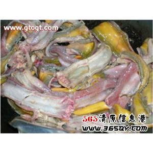 鳝鱼竹笋汤