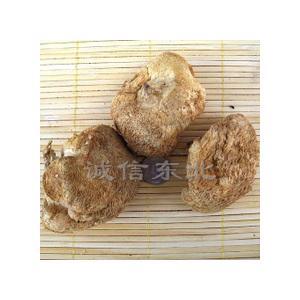 玉兰片猴头蘑