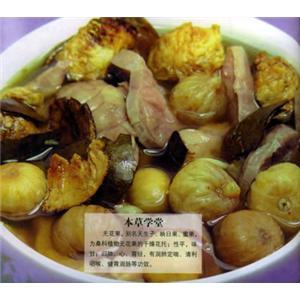生地猪肉汤
