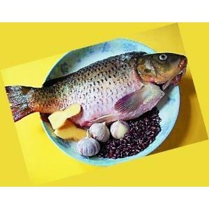 鲤鱼陈皮煲