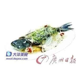丝瓜鱼肚卷