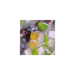鲤鱼丝瓜汤