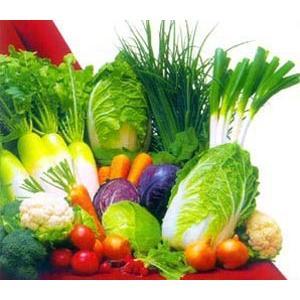煮蔬菜泥汤