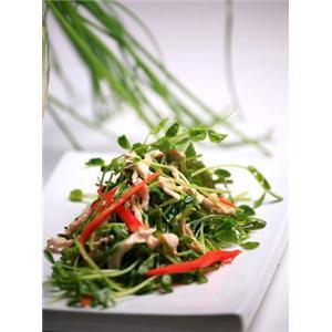 炒鸡丝蕨菜